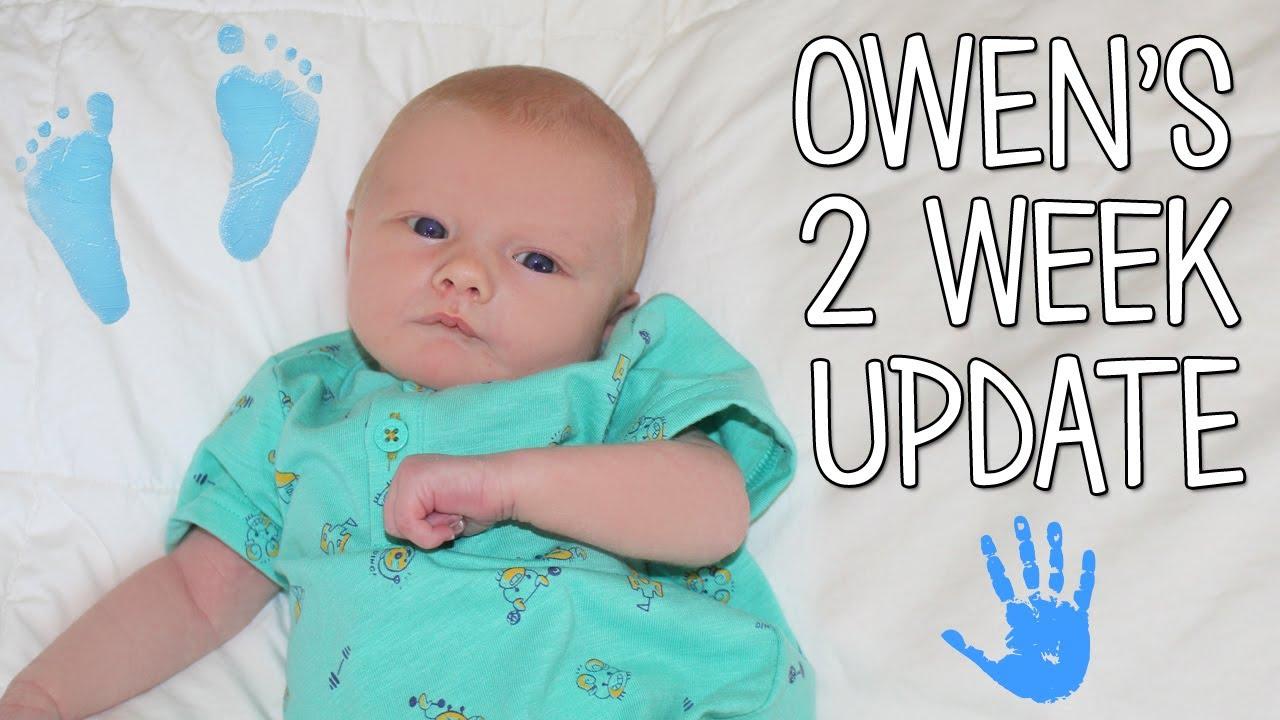 Baby Owen 2 Weeks Old Update Family Fun Pack