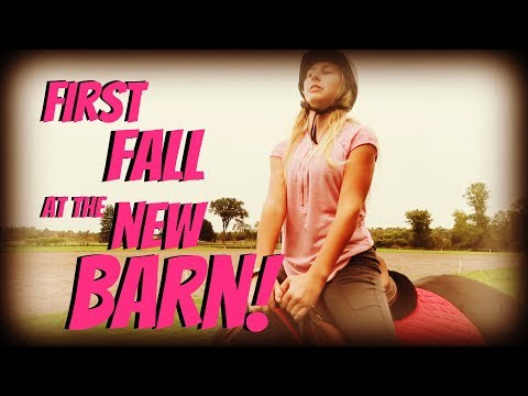 FIRST FALL AT THE NEW BARN! Day 270 (09/30/18)
