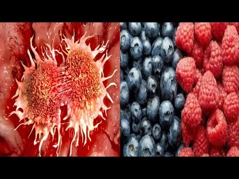 Cancer Dies When You Eat These 5 Foods Time To Start Eating Them ! 5 Anti Cancer Foods!