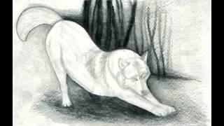 Как нарисовать волка(Поэтапная видео - инструкция, как нарисовать волка простым карандашом http://mariyafazleeva.ru/uroki-risovaniya/zhivotnyye/255-kak-narisov..., 2013-05-12T20:07:26.000Z)