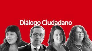 """Conversatorio """"Desafíos en la conformación del Órgano Constituyente""""  - Diálogo Ciudadano"""