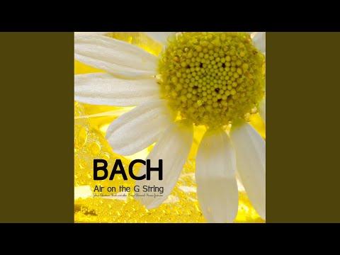 Brahms Lullaby Sleep Music (2nd Version)