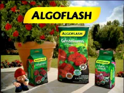 Nain de jardin algoflash publicit terreau g raniums for Terreau