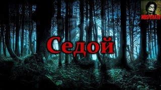 Истории на ночь - Седой