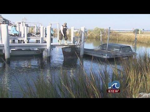 Health of Chesapeake Bay improving
