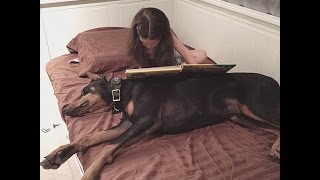 Cutie And The Beast! Adorable Siena Paints Her Dog's Nails