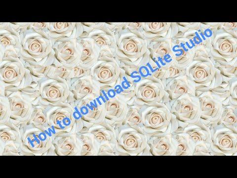 DOWNLOAD SQLite Studio