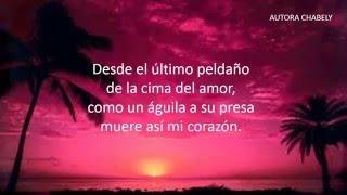 TU TRAICION YA ME ACECHABA  Poema de soledad   Poema de engaño y traición 4359ef05935b4
