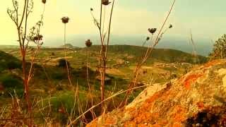 Oldways: The Secrets of Pantelleria