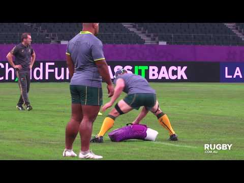 Wallabies ready themselves for the 'unknown'