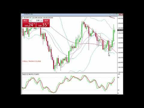 Forex signal chat room