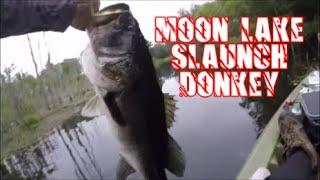 HUGE Bass At Moon Lake Hiding In The Lagoon