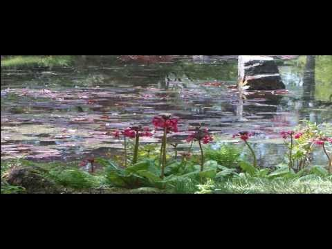 My Slideshow Video japanse tuin clingendael 2013