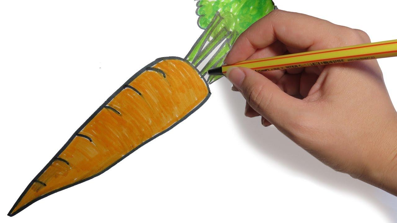 Como Dibujar Frutas Y Verduras Zanahoria Facil Paso A Paso Youtube