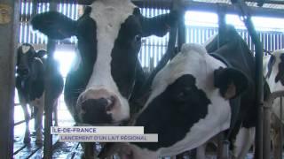 Ile-de-France : lancement d'un lait régional