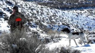 Chukar Hunting With Dirk