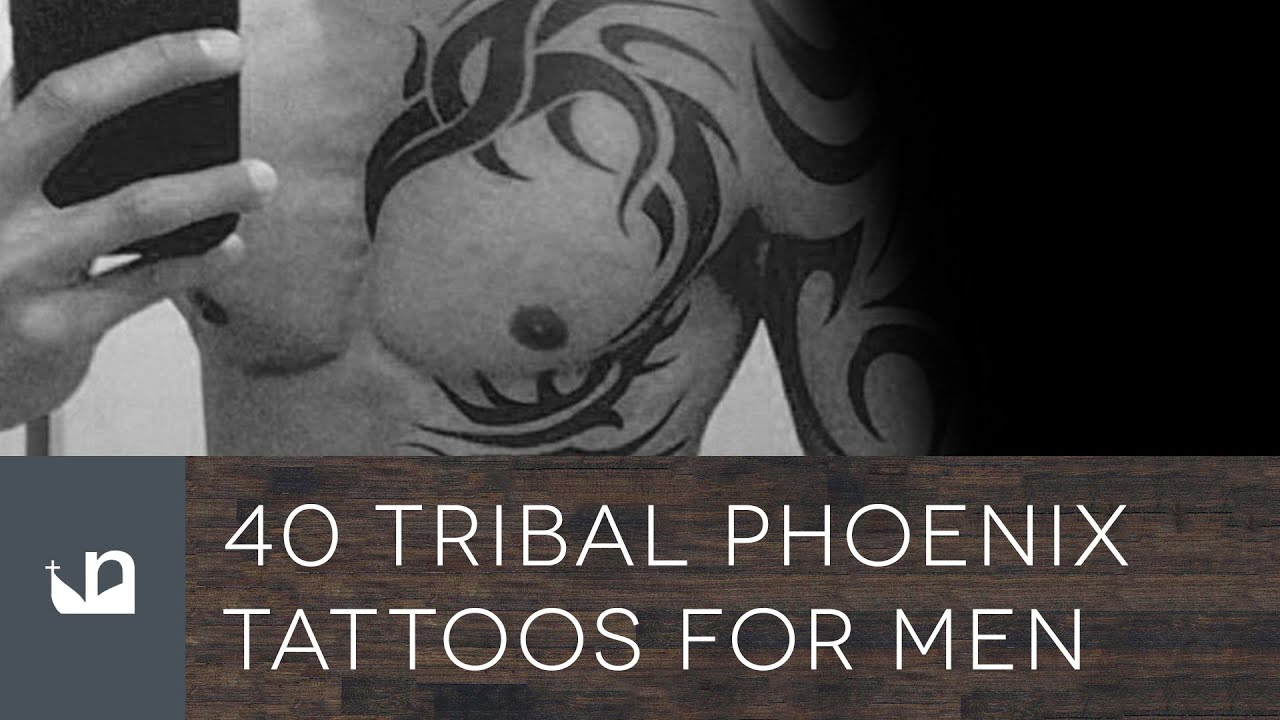 Male Tribal Phoenix Tattoo Designs