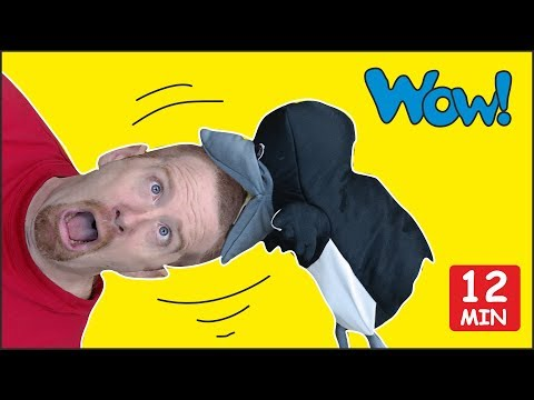 Body Parts + MORE Head Shoulders and Knees for Kids | Steve and Maggie | Speaking Wow English TV