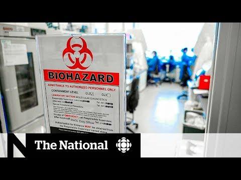 Inside A Canadian Lab Testing For Coronavirus