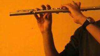 J. S. Bach-Suite No 2-Rondeau-(BWV 1067)