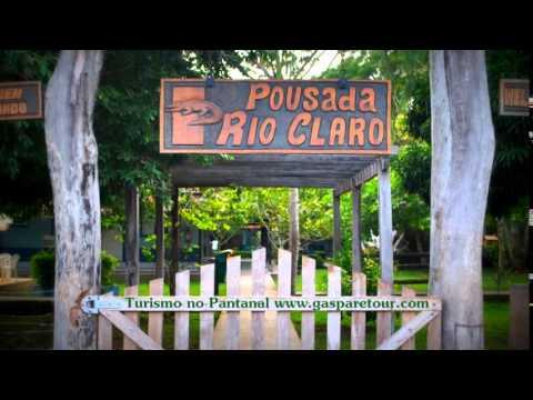 Pantanal - Gasparetour Travel Agency