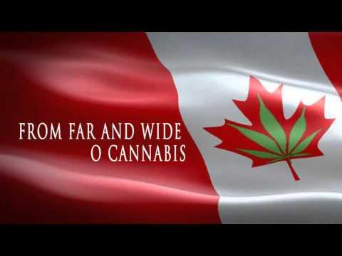 "O Cannabis - ""The Anthem"""