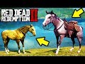 HOW TO GET EVERY LEGENDARY HORSE FREE In Red Dead Redemption 2 Unlock All Best Horses RDR2 mp3