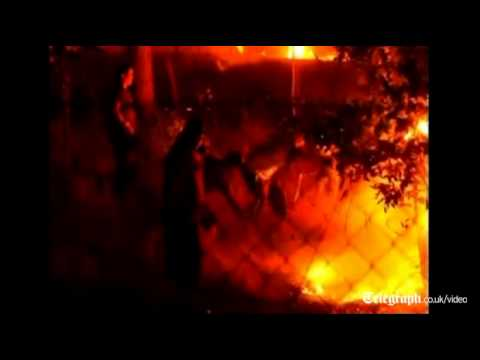 Forest fires rage in Chile