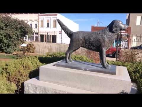 Jim the Wonder Dog Memorial in Marshall, Missouri
