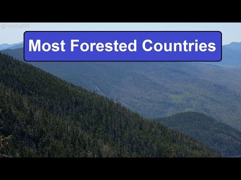 10 Most Forested Countries
