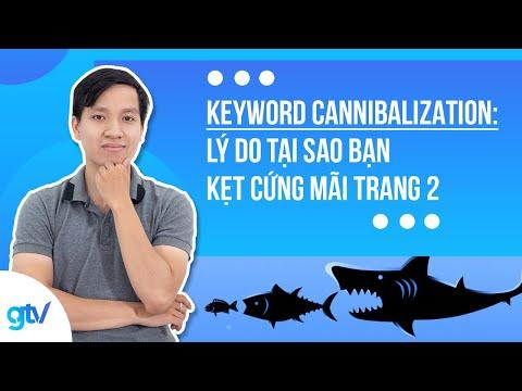 Keyword Cannibalization: Lý do tại sao bạn kẹt cứng mãi trang 2 - GTV SEO