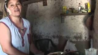 Argentine: la forêt détruite au profit du soja transgénique