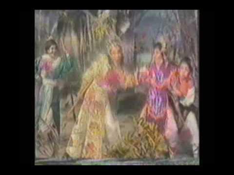 Luu Kim Dinh chieu phu 3.flv