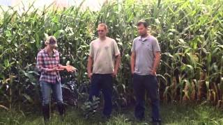 Increasing Cover Crop Adoption in Northwest Wisconsin, Julia Olmstead, WI
