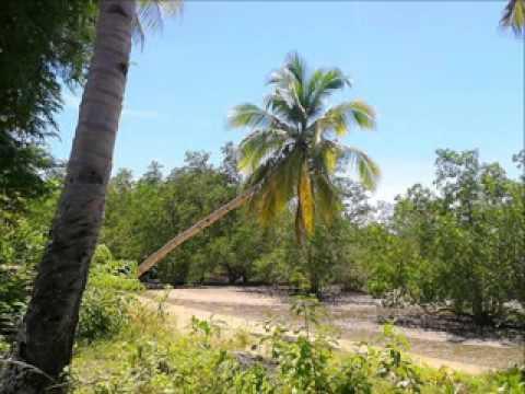 Roxas, Palawan - Leisure Beach With Island Views 4 SALE