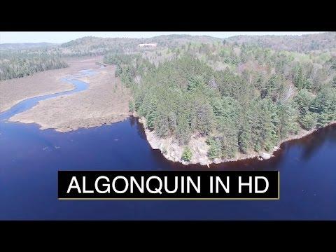Algonquin Provincial Park in HD