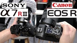 Canon EOS R vs Sony A7R III