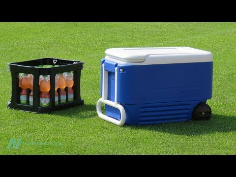 How Athletes Should Choose the best Sports Drink