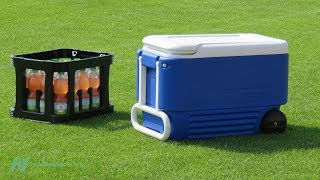 Are Sports Drinks Safe and Effective?