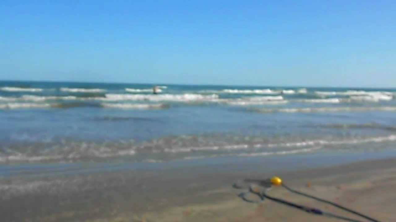 Port aransas beach and william fishing in the surf oct for Fishing report port aransas