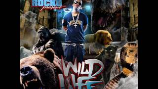 ROCKO - WILD LIFE - 16 - FINAL WORDS OUTRO