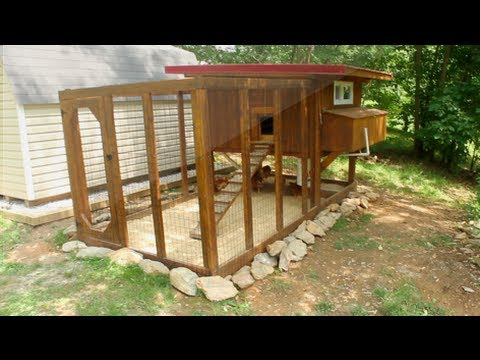 backyard chickens chicken coop tour easy to clean youtube