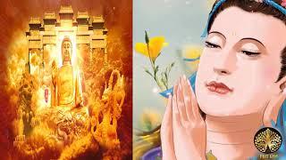 Vấn Đáp Phật pháp Rất hay câu hỏi đáng suy ngẫm học những lời phật dậy
