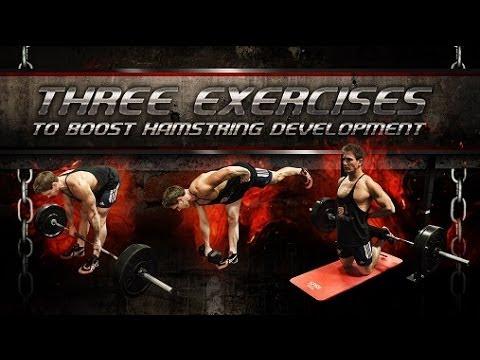 Three Exercises To Boost Hamstring Development!
