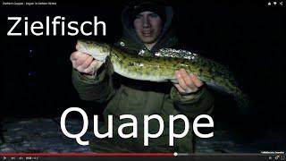 Quappenangeln - Eiskalt zum Zielfisch