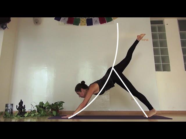 Practica Yoga desde tu casa