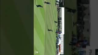 Pakistan vs scotland wickets