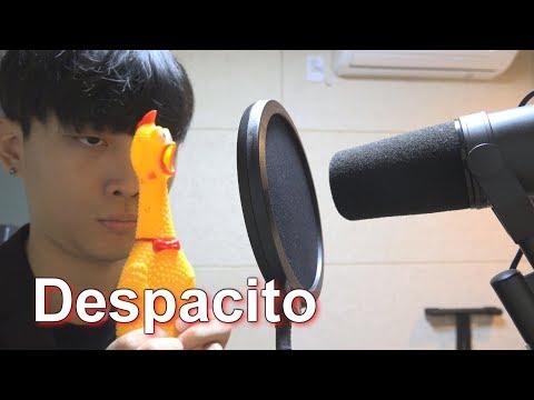 Luis Fonsi  Despacito Chicken Band Ver   Big marvel