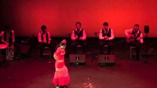 Ana Calí - Zambra - Flamenco Viene del Sur 2013
