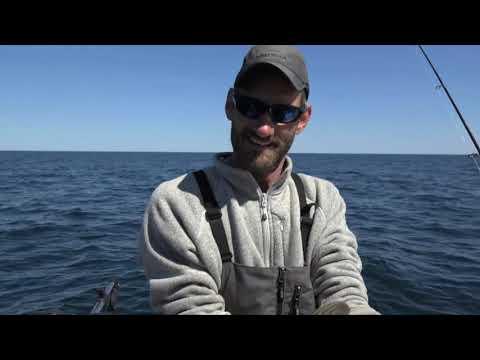 Stannard  Rock Lake Trout, Beaver Island Carp, Bragging Board; Michigan Out of Doors TV #2031